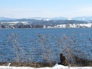autour du Greifensee  dans Randonnées img_26181-300x225