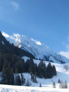 img_2653-225x300 montagne